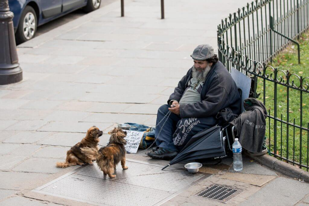 A homeless man and his beloved dogs