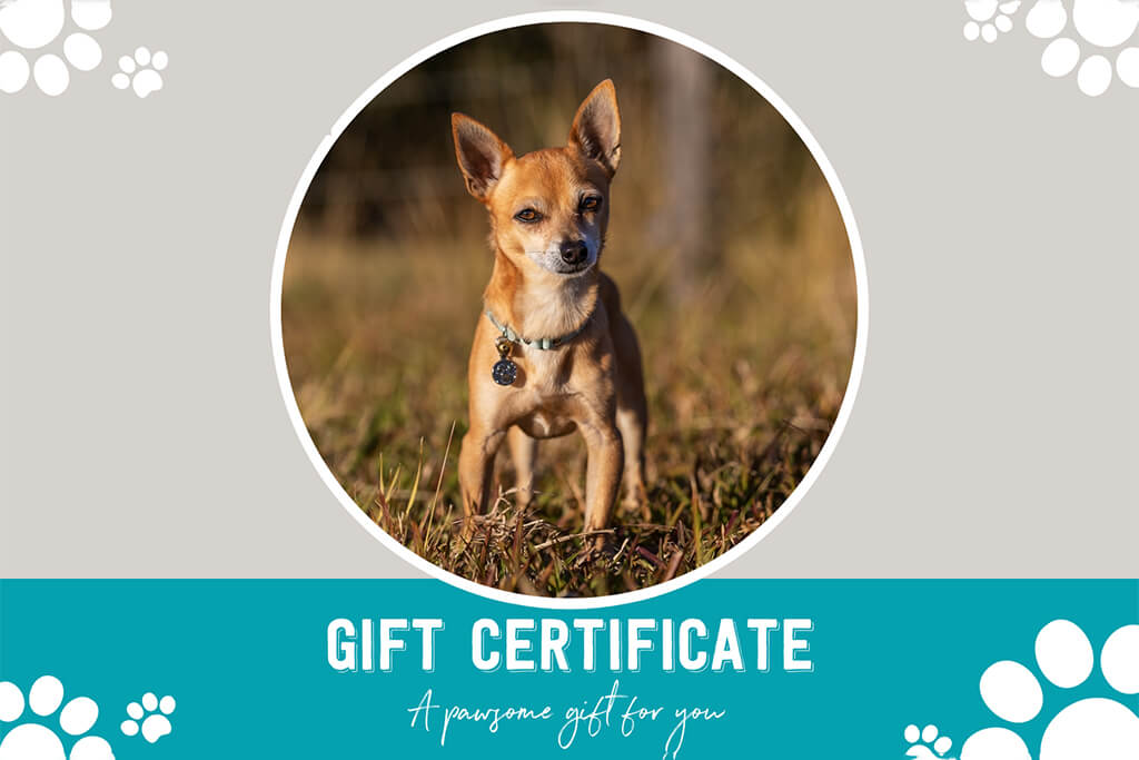 2020 Gift Certificate