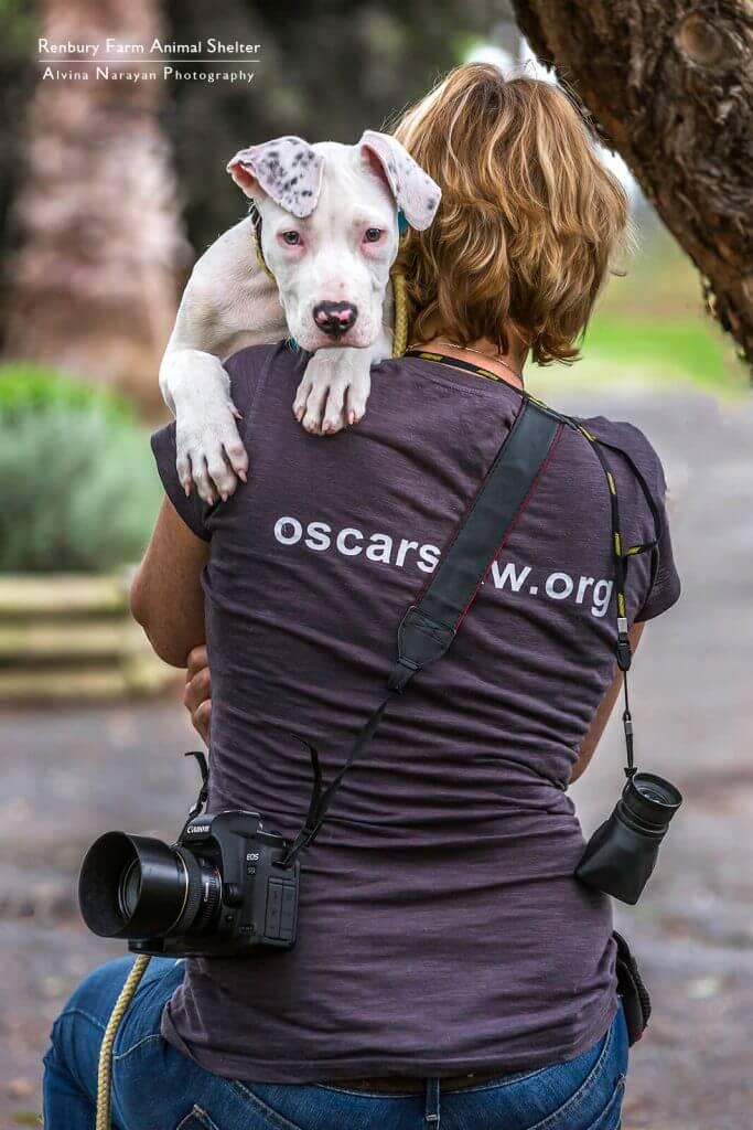 Jo Lyons Photography - Volunteer Animal Rescue Photographer