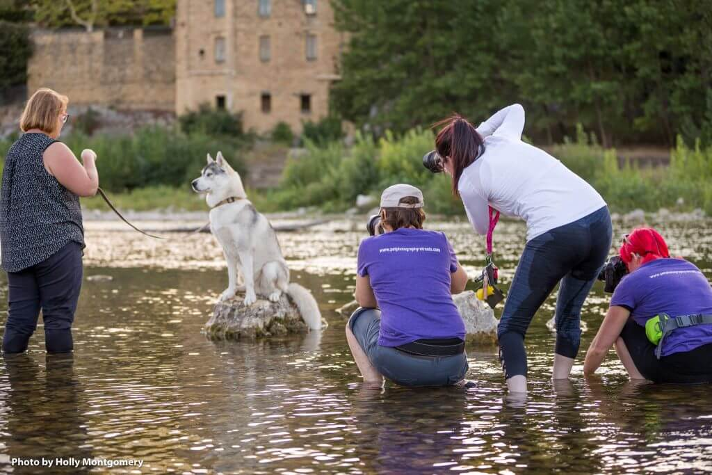 Barkjour BTS by Holly Montgomery