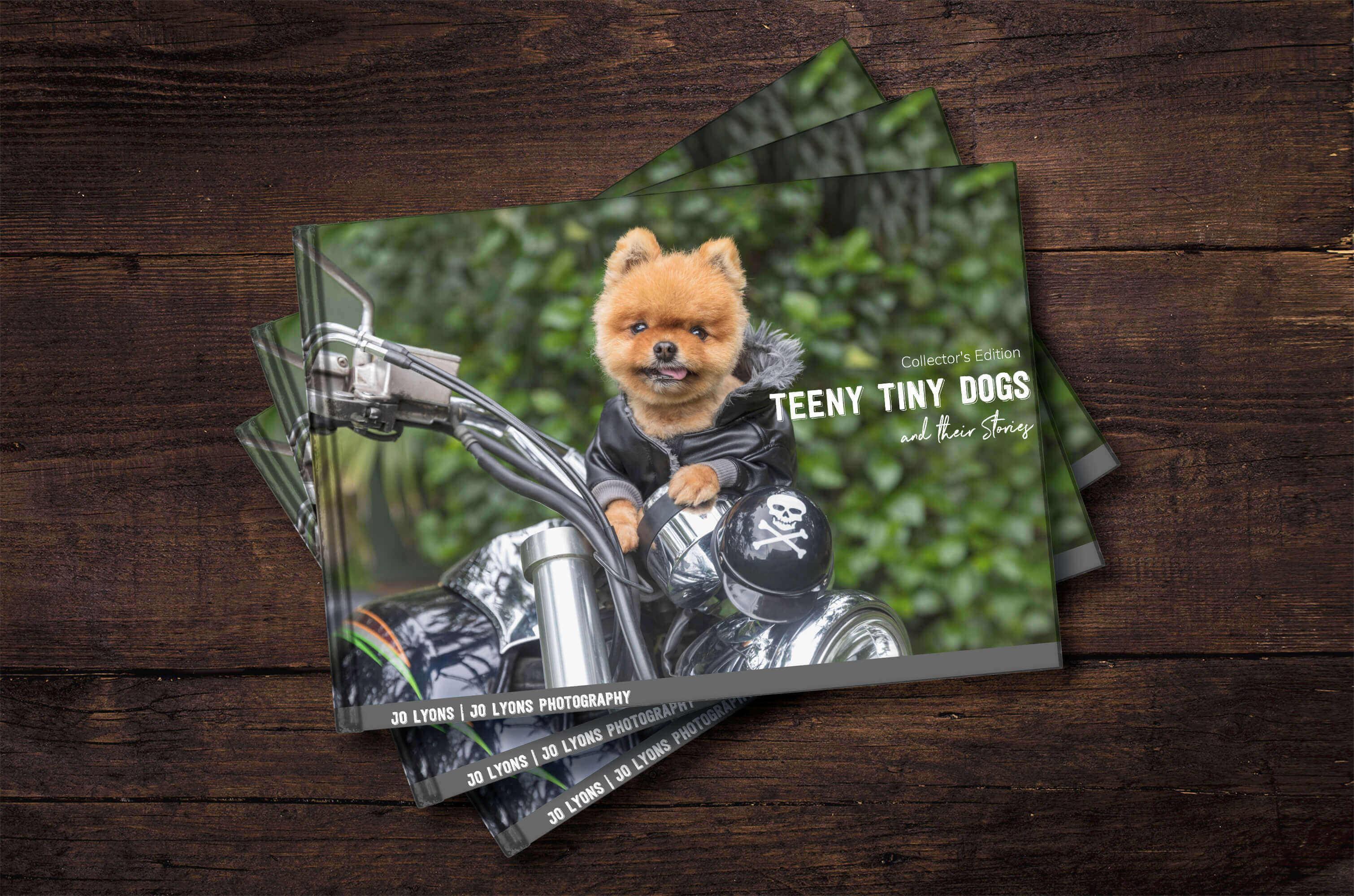 Teeny Tiny Dogs Fundraising Book