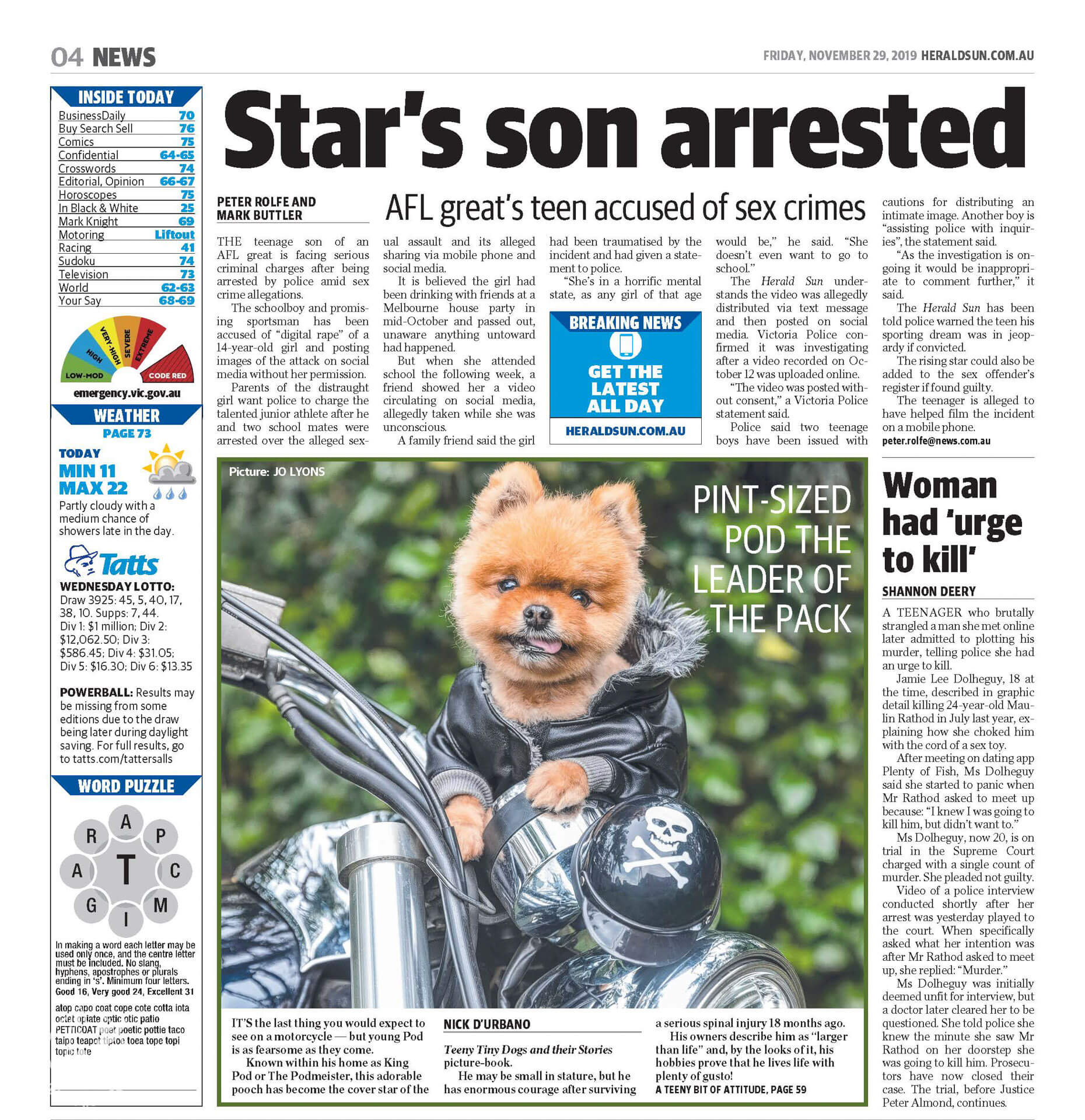 Pod the orange Pomeranian dog posing on his motorbike. Chrome. Black, Green. Helmet. Skull and Crossbones.
