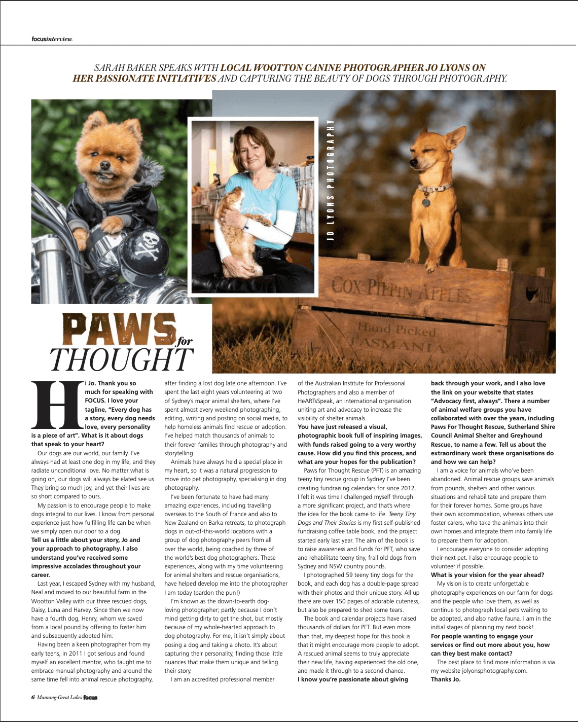 Tiny Dogs Book, Pomeranian on a motorbike in full leathers, Chihuahua posing in apple box, Jo Lyons Photography
