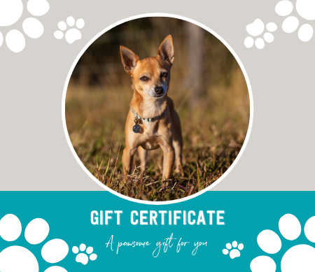 Gift Certificate Thumbnail for Shop