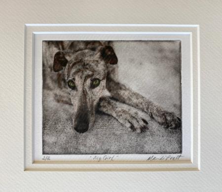 Greyhound Etching Fine Art