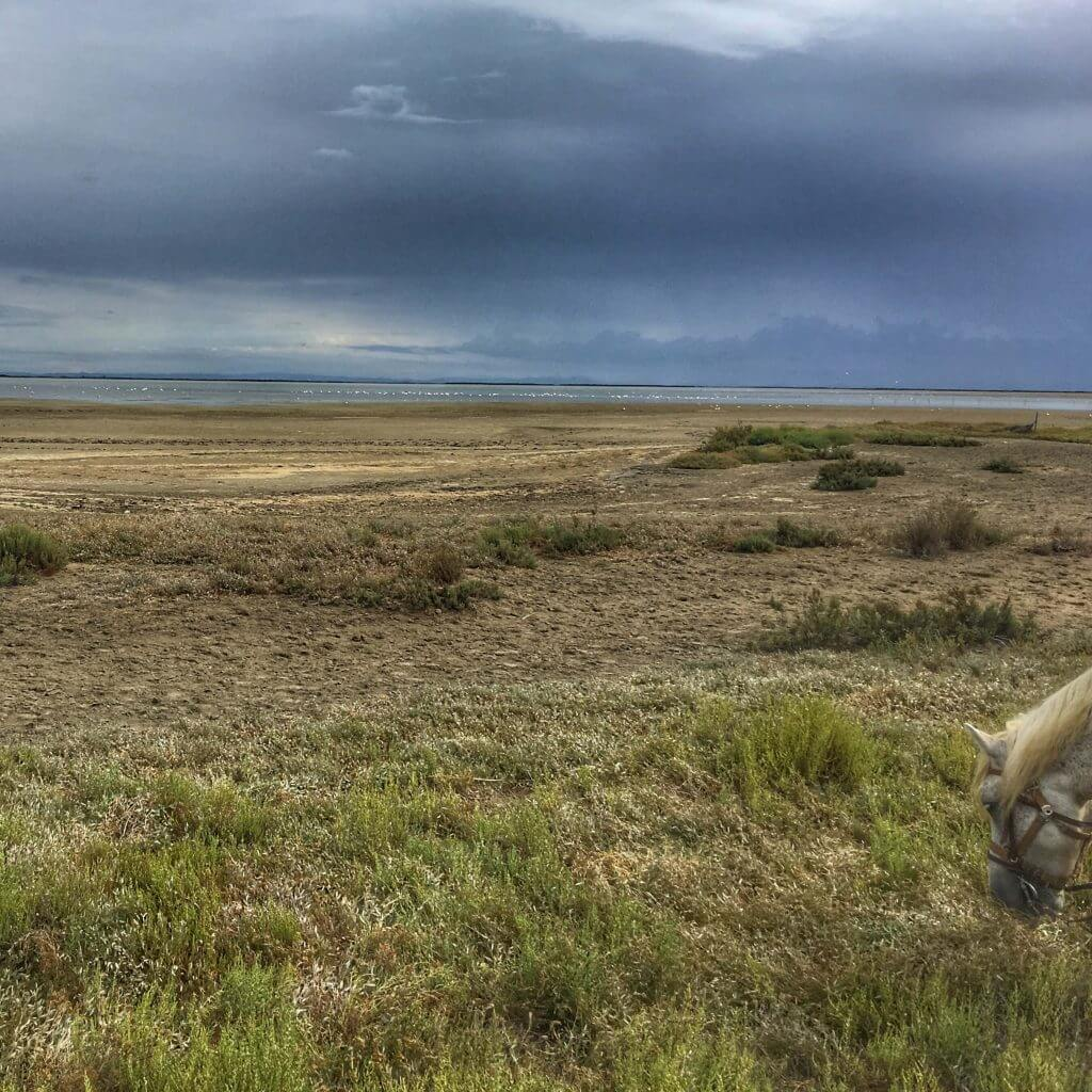 View from my horse of the grasslands and salt lakes and the Flamingos if you look really hard!