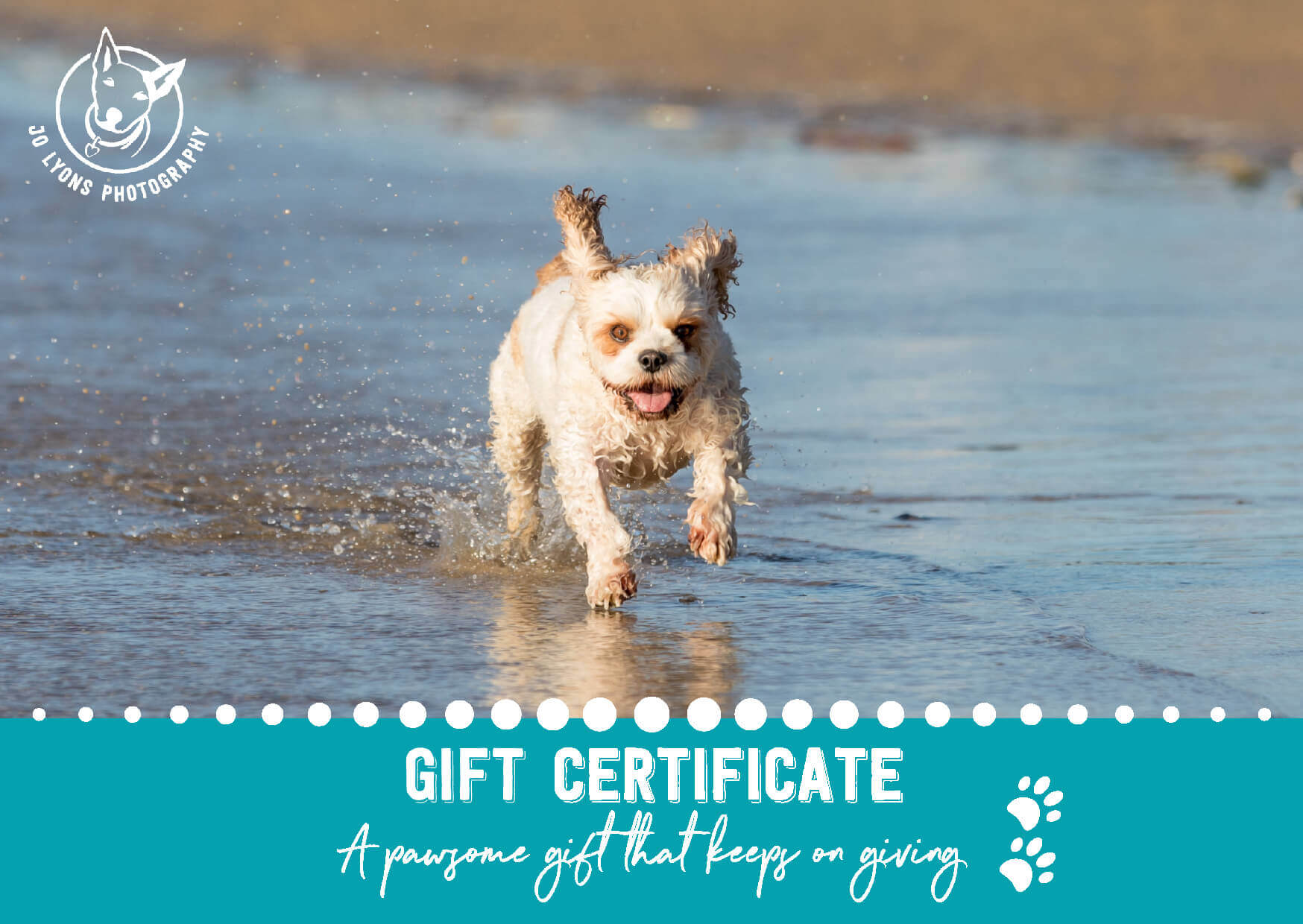 Jo Lyons Photography Gift Certificate Sample Side 1