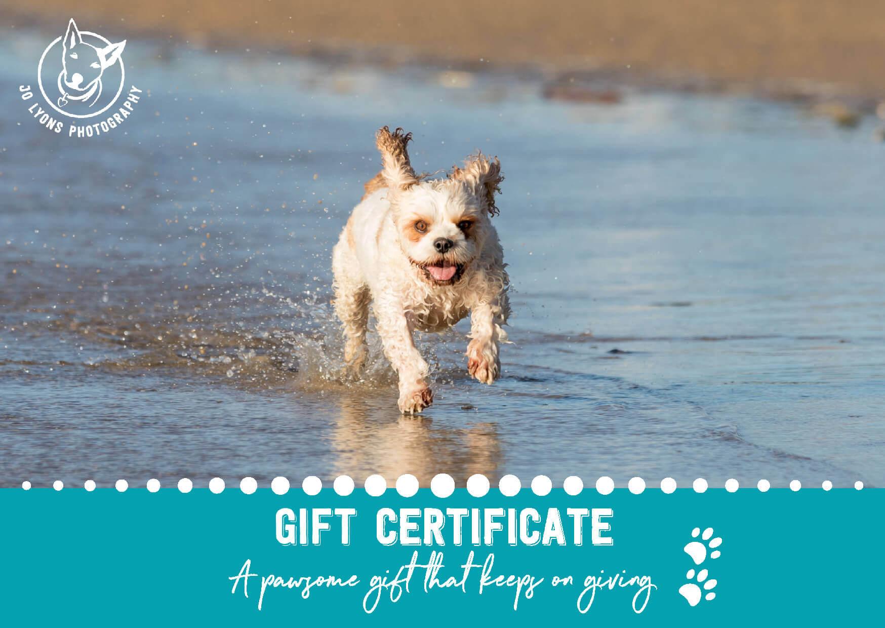 Jo Lyons Photography Gift Certificate Sample Side 1