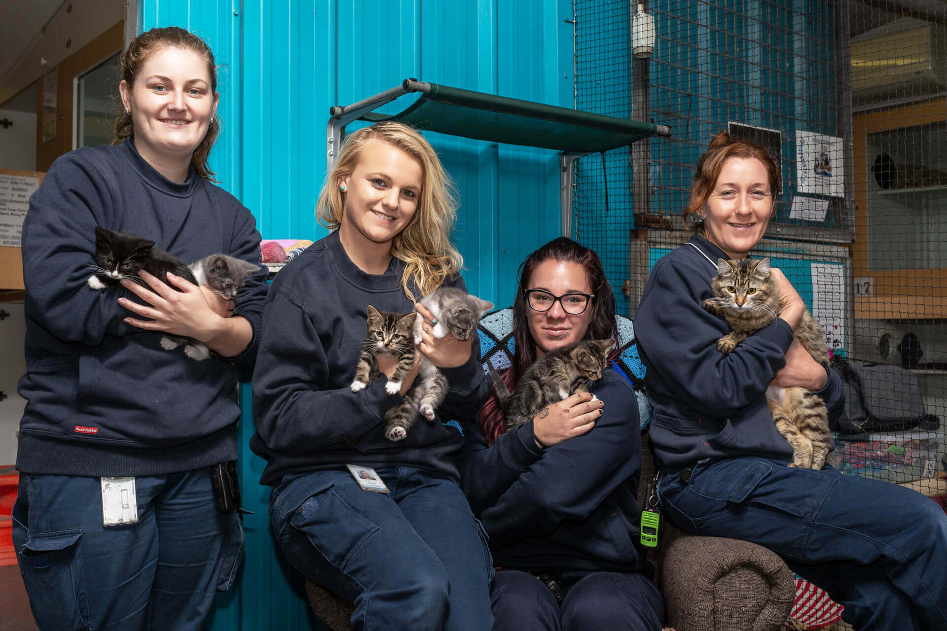 Sutherland Shire Council Animal Shelter Team