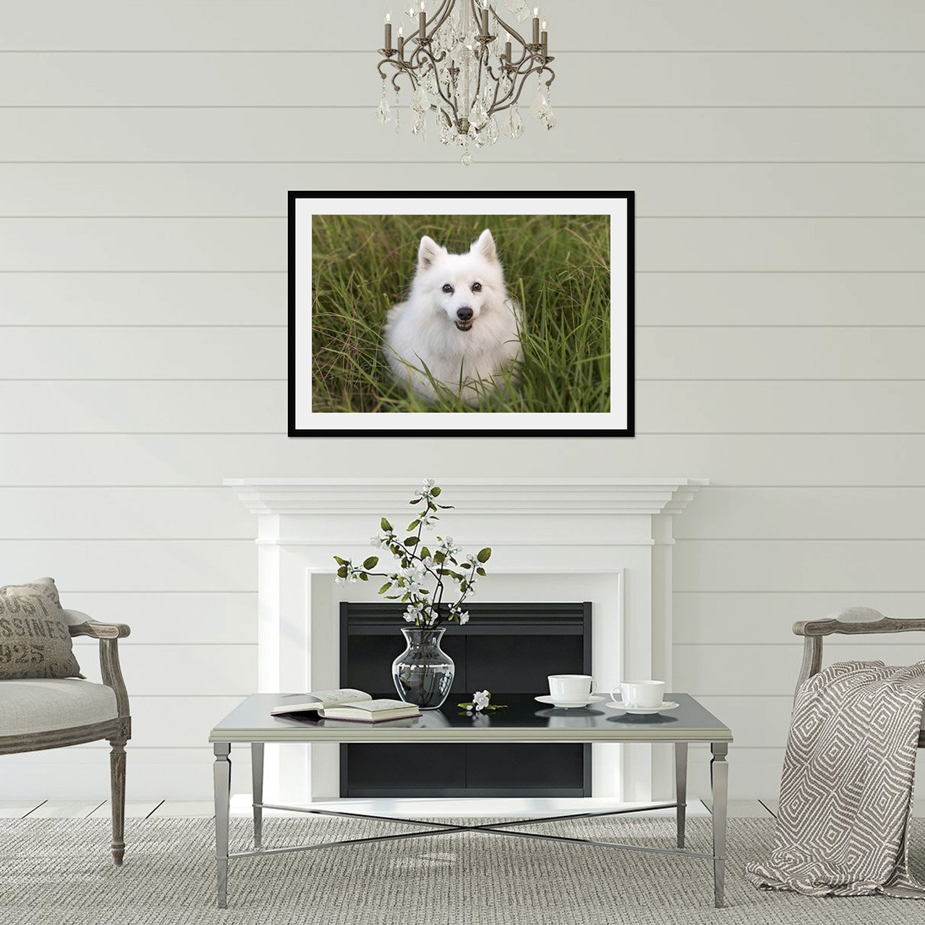 Saki on the wall as fine art