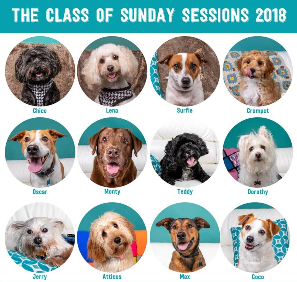 Sunday Sessions Class of 2018 (1)