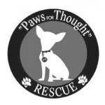 """Paws for Thought"" Rescue"