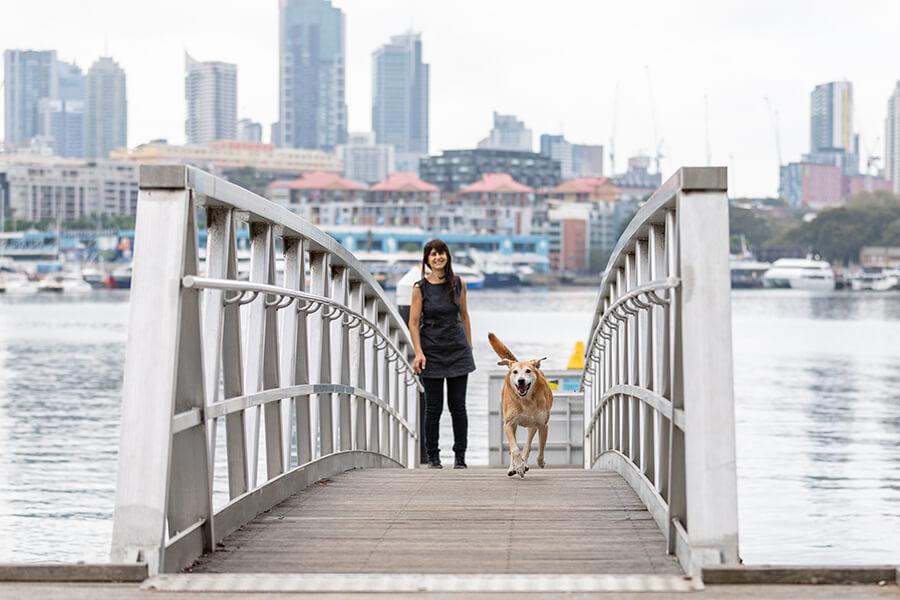 CityLife-Greek Stray to Loved Sydney Dog-14