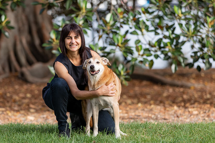 CityLife-Greek Stray to Loved Sydney Dog-33