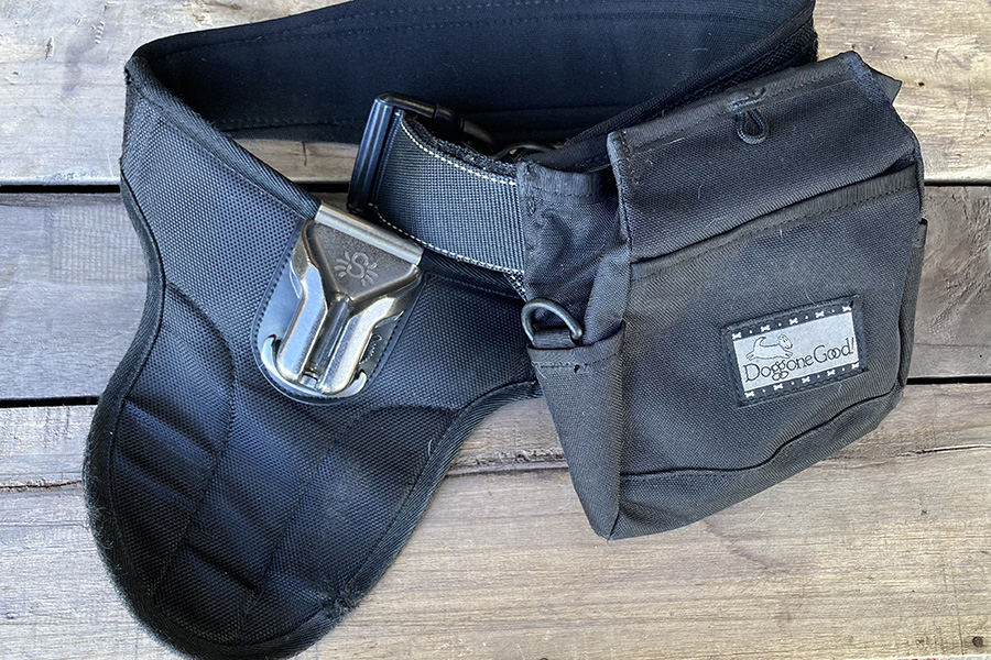 No. 5: Spider Holster Belt with Treat and tool bag
