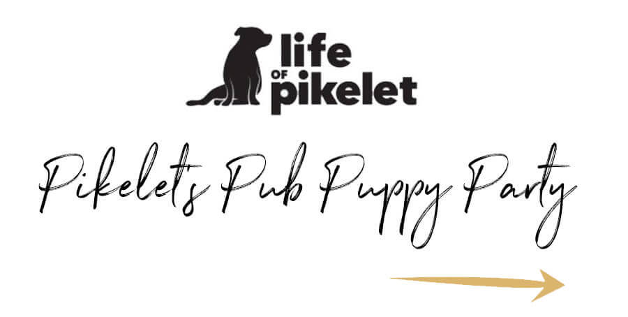 Life of Pikelet